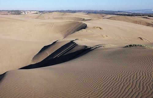 SEA recomienda rechazar hotel en las dunas de Ritoque
