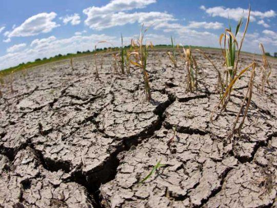 Las olas de calor y las sequías se duplicaron en menos de 100 años
