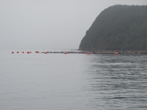 Aprueban proyecto de relocalización de concesiones acuícolas