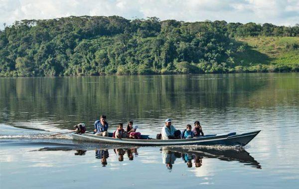 Brasil elimina 11 nuevas áreas protegidas en la Amazonía con una superficie de 600 mil hectáreas