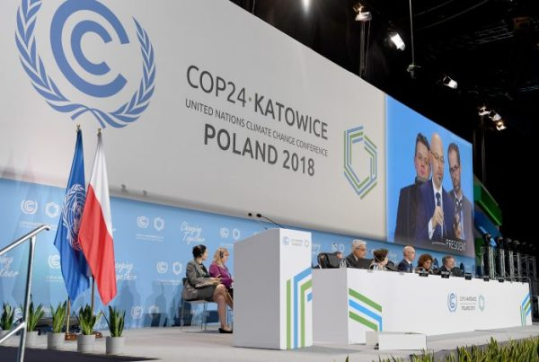 Ser anfitrión de la COP25 no es la acción más importante en contra del Cambio climático