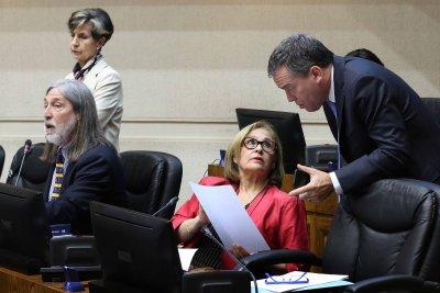 Captura de la jibia pasa su prueba en el Senado