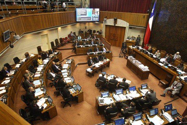 Senado debate creación del nuevo Servicio Nacional Forestal que vendría a reemplazar a CONAF