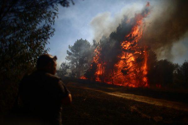 Ministerio Público investiga intencionalidad en 27 incendios forestales en la región del Biobío