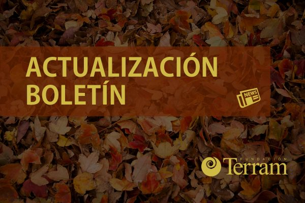 Actualización boletín Terram