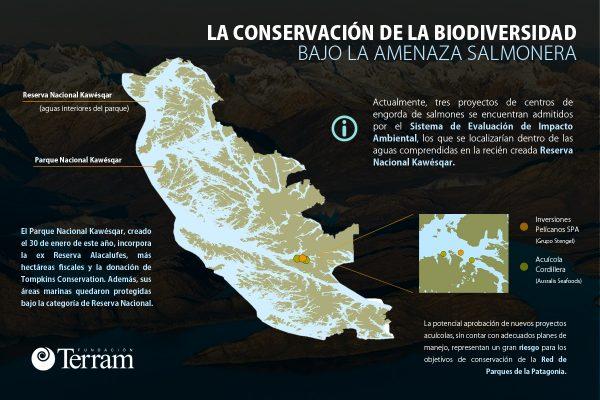 """Infografía: """"La conservación de la biodiversidad bajo la amenaza salmonera"""""""